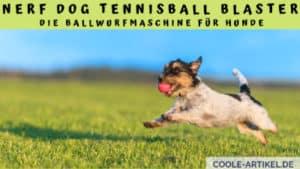 NERF Dog Tennisball Blaster - Die Ballwurfmaschine für Hunde